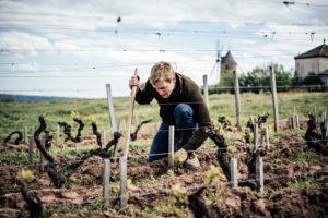 Brice Laffond - Winemaker & Vineyard Manager