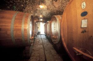 Barrels in Via Castellana