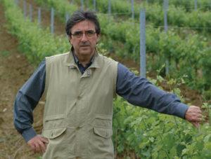 Riccardo Cotarella, consulting winemaker