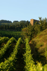 Vineyards with the Commenda di Sant'Eufrosino in the distance