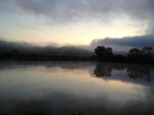 Picking Calera Chard at Hyde Vyrd, shot of the lake 2013
