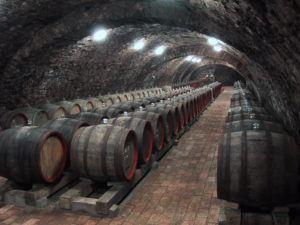 RT Cellars 3 by David Bird MW 2000