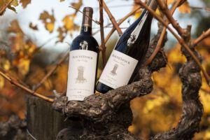 Routestock-Wines-Vineyard-6848 by Frank Gutierrez