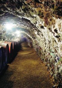 Royal Tokaji Cellar