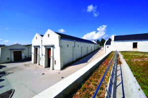Royal Tokaji Winery w green roof