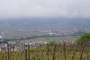 View from Mambourg Hill to Sigolshiem