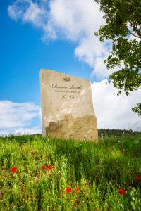 Domaine Laroche Chablis Grand Cru Les Clos Vineyard